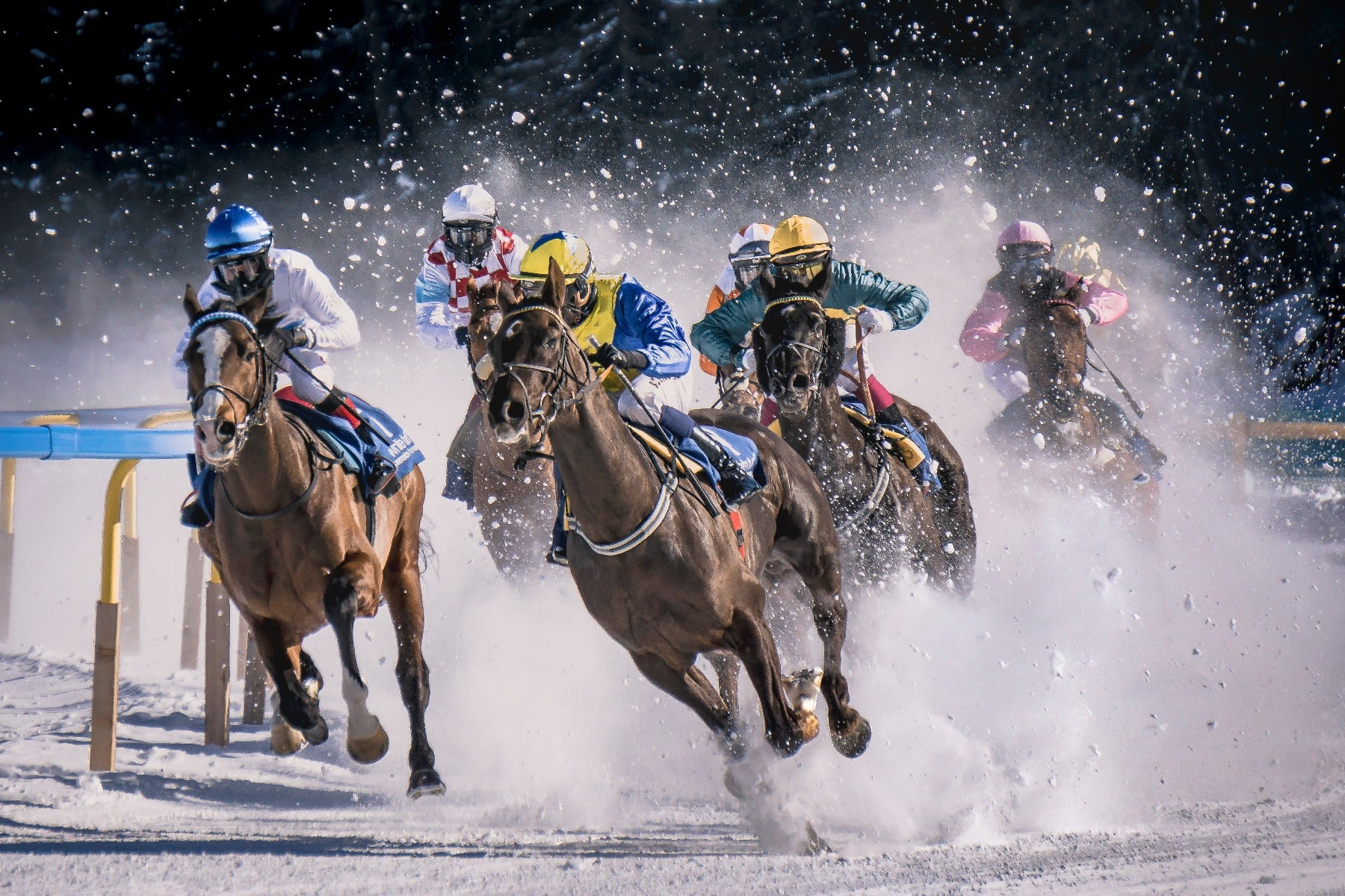 Horse racing with fast shutter speed