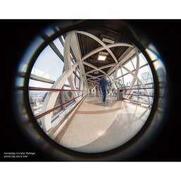 Lensbaby Circular Fisheye Fujifilm X