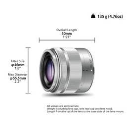Panasonic LUMIX G VARIO 35-100mm f/4.0-5.6 ASPH. MEGA O.I.S. Lens (Silver)