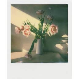 Polaroid Colour Film for i-Type