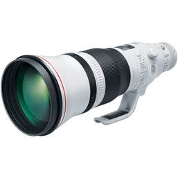 Canon EF 600mm f/4L IS USM III Lens