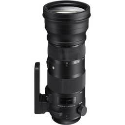 Sigma 150-600mm f/5-6.3 Sports Lens Kit + TC-1401 Canon