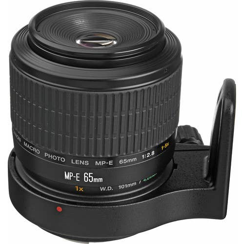 Canon MP-E65mm f/2.8 1-5x Macro Lens  -  MPE6528