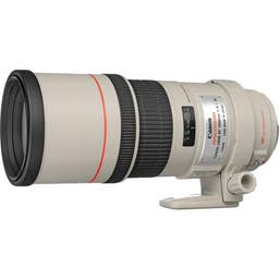 Canon EF 300mm f/4L IS USM Camera Lens