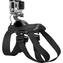 GoPro Fetch (Dog Harness)  GPADOGM-001