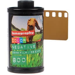 Lomography 35mm ISO 800 Color Negative Film 36 Exposure (3-Pack)