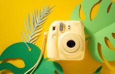 Everything You Need to Know About Instant Cameras