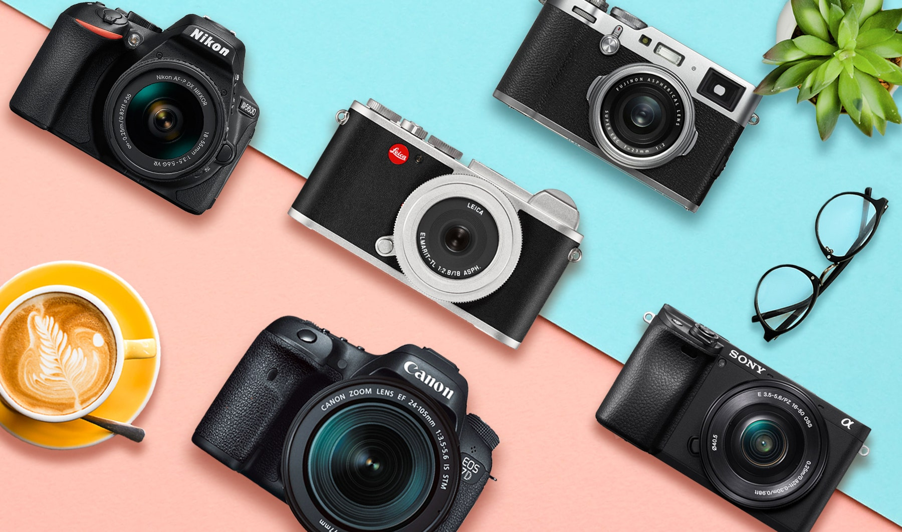 APS-C Camera Buyer's Guide