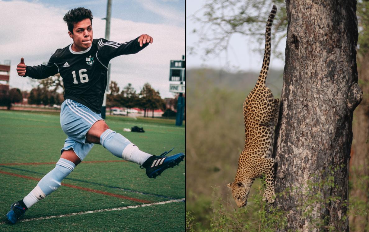 Tips for Using Telephoto Lenses for Sports & Wildlife