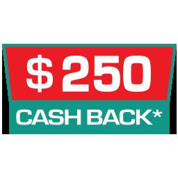 FujiFilm $250 Cashback