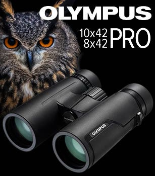 Olympus PRO